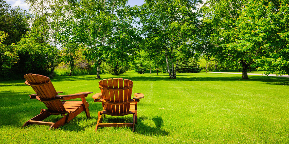 Summer Lawn Maintenance Services